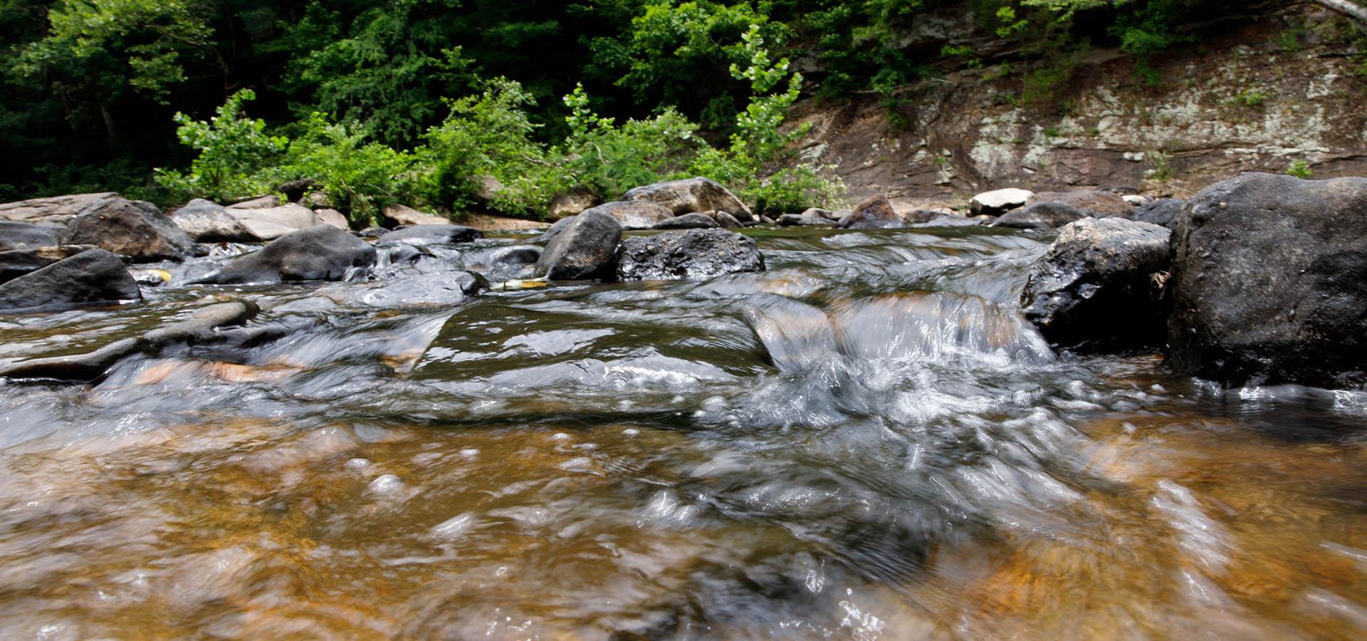 water flows through a creek